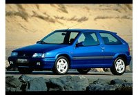 Pellicole auto citroen ZX(1991 - 1998 3 porte)