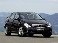 Pellicole auto mercedes classe R(2006 - 2009 long)