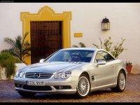 Pellicole auto mercedes SL55(2002 - 2006 coupe)