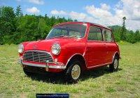 Pellicole auto mini austin(1959 - 1988 )