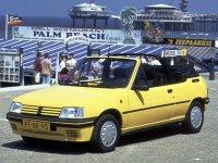 Pellicole auto Peugeot 205(1983 - 1996 cabriolet)