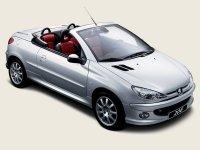 Pellicole auto Peugeot 206(2001 - 2006 cc)