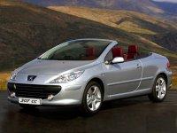 Pellicole auto Peugeot 307(2004 - 2005 cc)